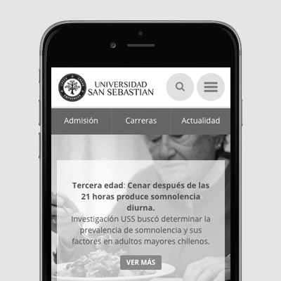 Desarrollo MEAT: Universidad San Sebastián